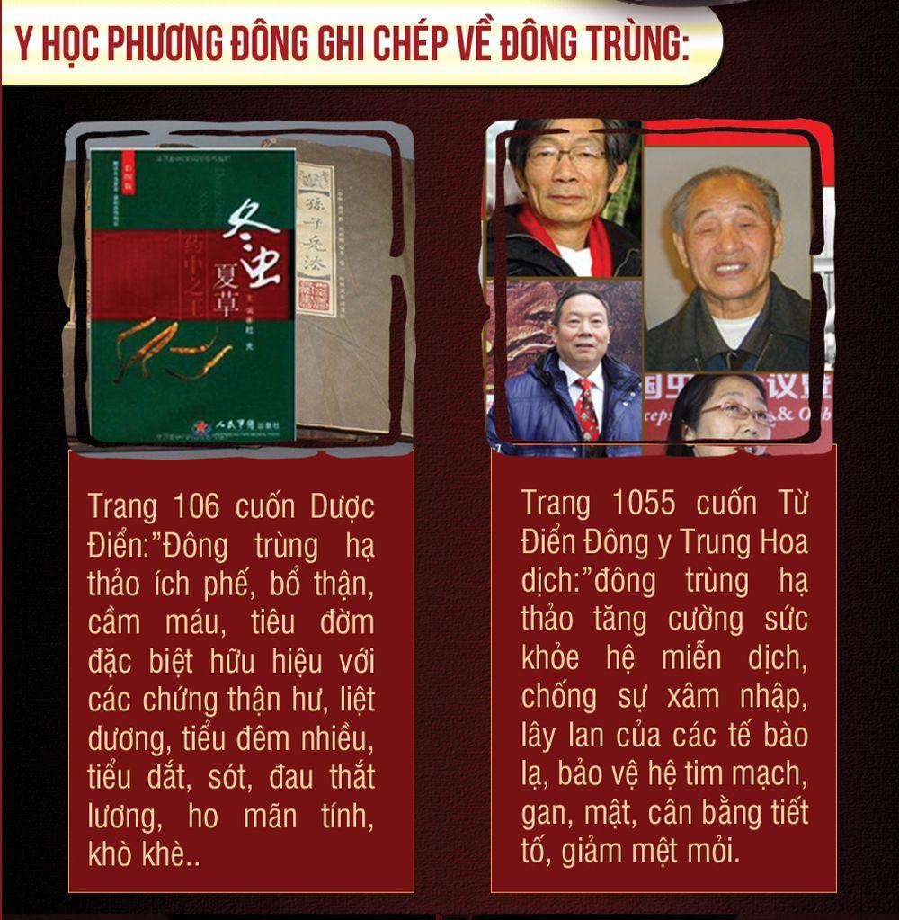 Quy trình phát triển của đông trùng hạ thảo Tây Tạng