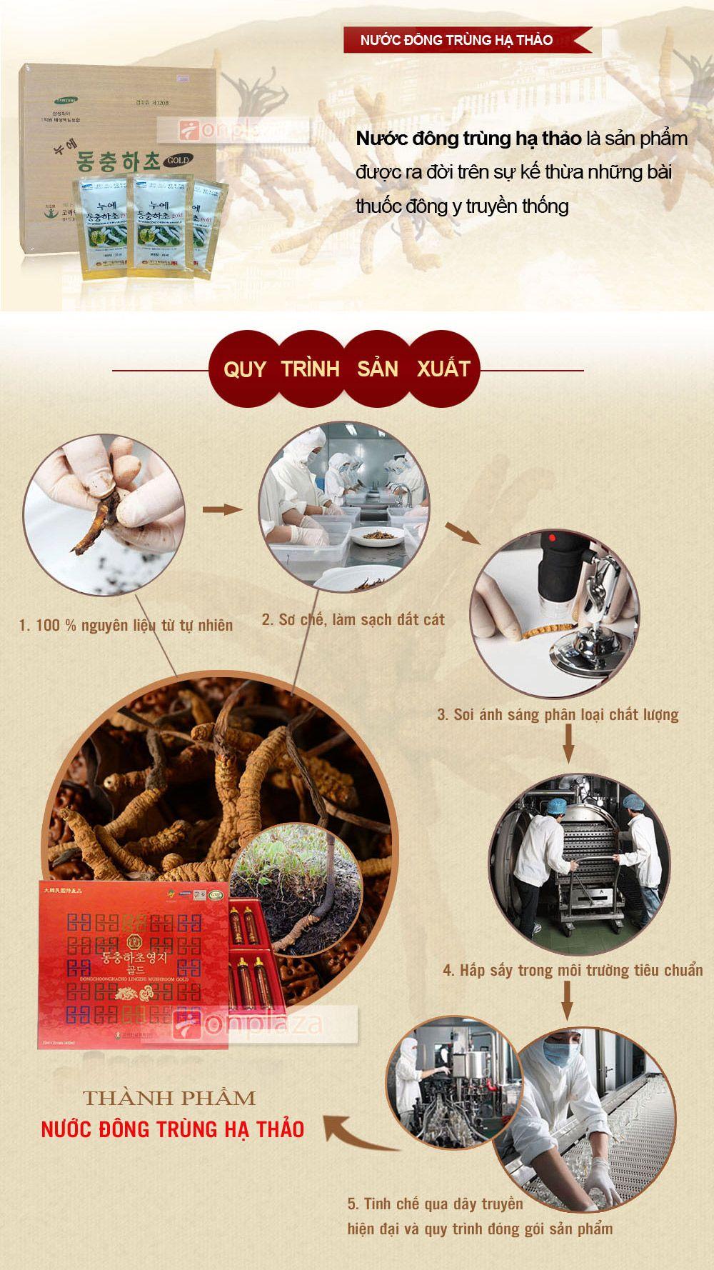 Quy trình sản xuất nước đông trùng hạ thảo