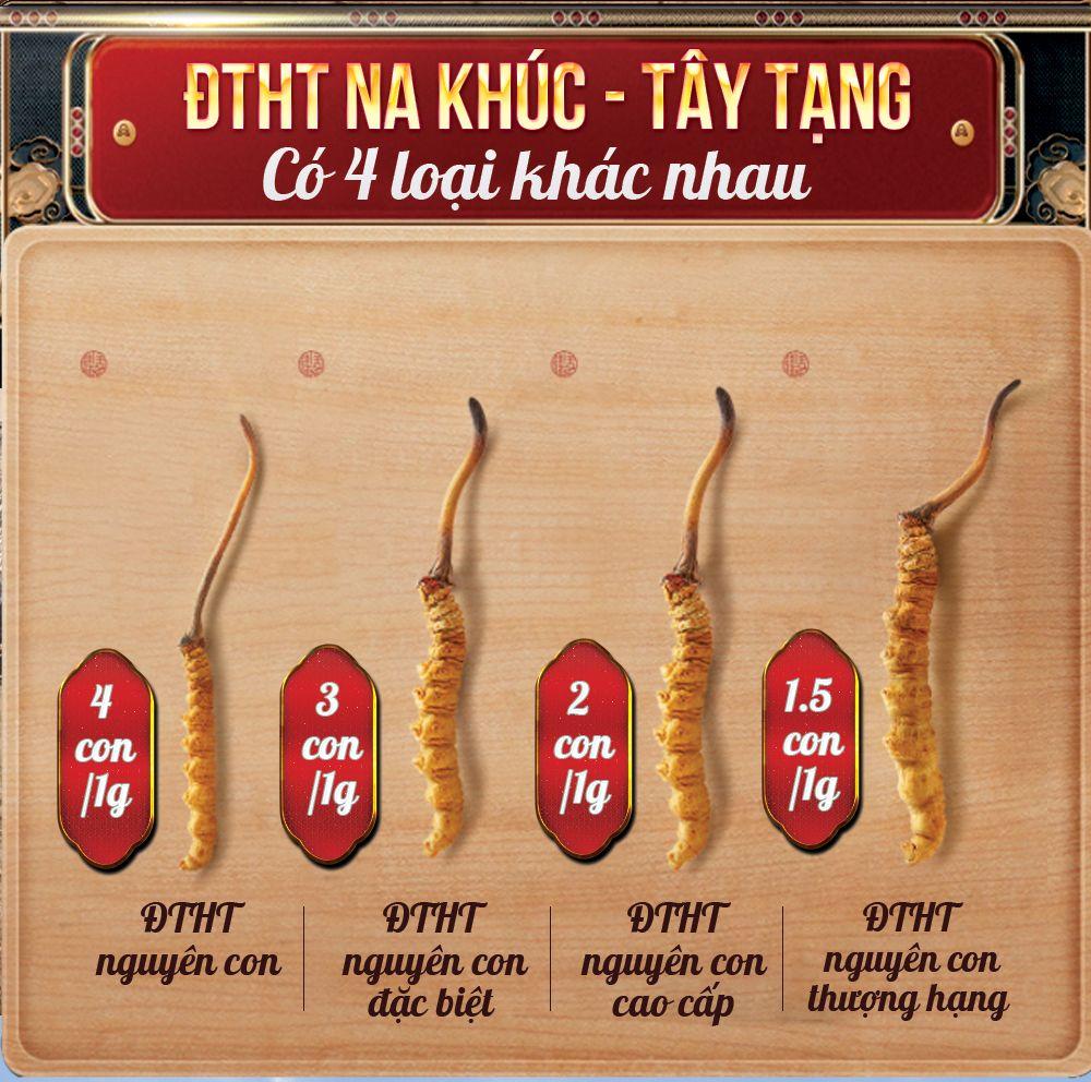 Các dòng sản phẩm đông trùng hạ thảo nguyên con sấy khô