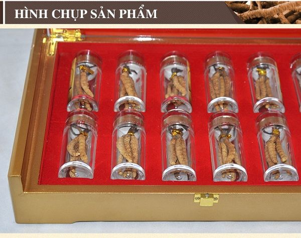 Hình ảnh chụp hộp đông trùng hạ thảo Trung Quốc cao cấp tại cửa hàng