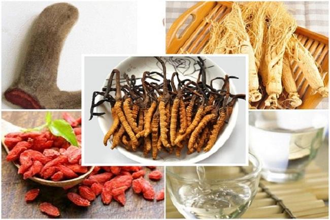 Nguyên liệu thường dùng để ngâm rượu đông trùng hạ thảo