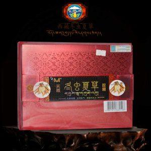 Đông trùng hạ thảo dạng viên nang nhập khẩu Trung Quốc