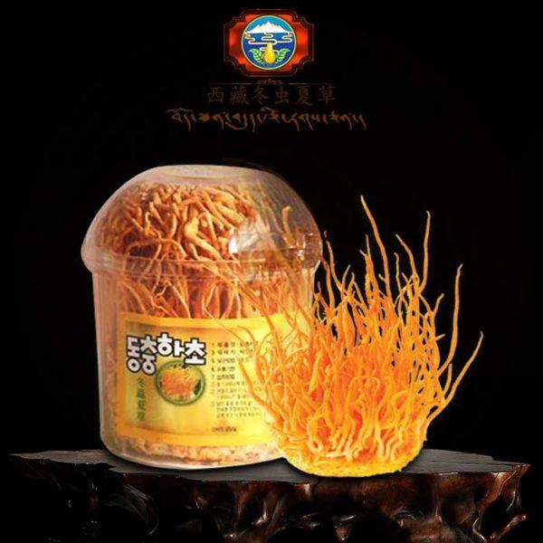 Giá nấm đông trùng hạ thảo khô nhập khẩu Hàn Quốc