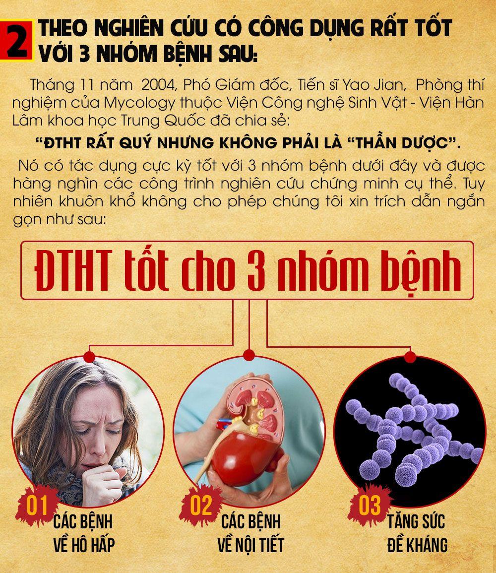 Tác dụng của đông trùng hạ thaot với 3 nhóm bệnh chính
