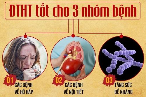 Tác dụng của đông trùng hạ thảo với sức khỏe con người