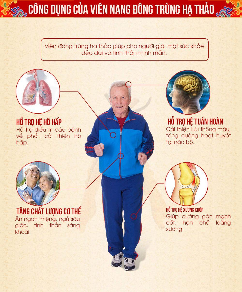 Tác dụng của viên đông trùng với người cao tuổi