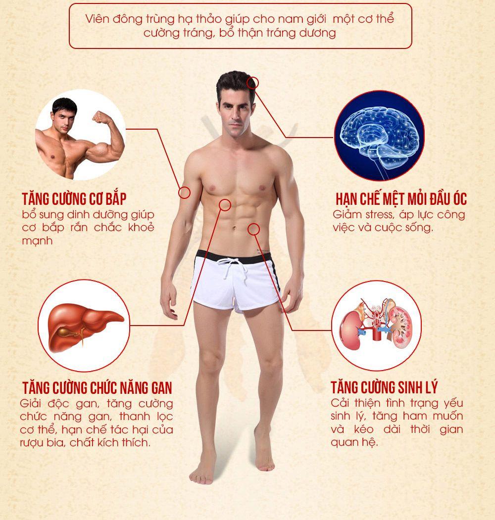Viên đông trùng hạ thảo tăng cường sinh lý cho nam giới