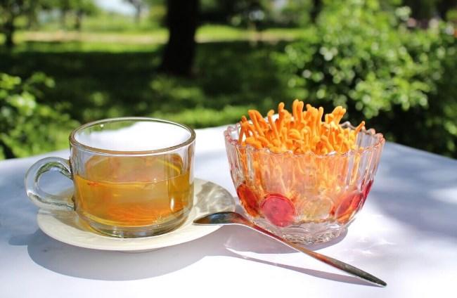 Dùng đông trùng hạ thảo tươi hãm trà với nước nóng