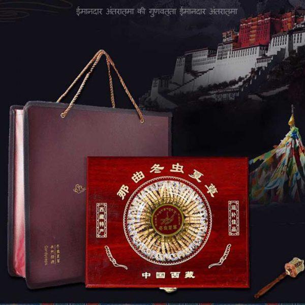 Đông trùng hạ thảo Tây Tạng loại 160 con hộp 100gr