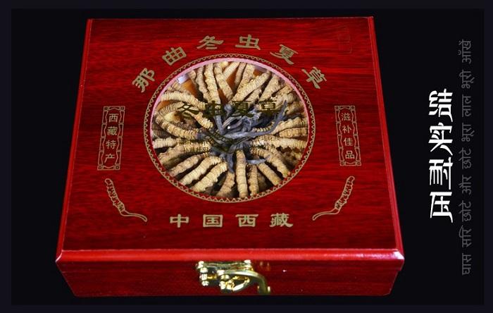 Đông trùng hạ thảo Tây Tạng loại 160 con hộp 100gr 1