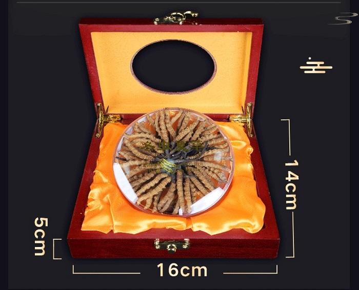 Đông trùng hạ thảo Tây Tạng loại 160 con hộp 100gr 2