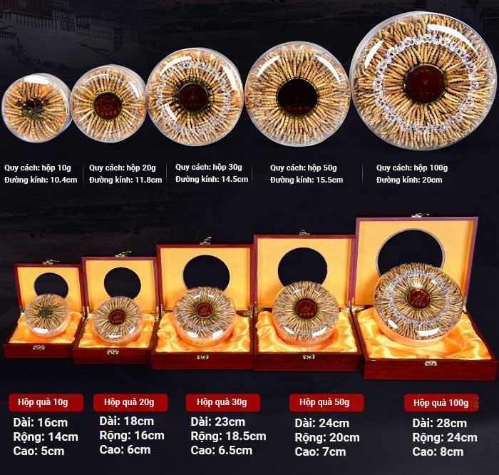 Đông trùng hạ thảo Tây Tạng loại 160 con hộp 100gr 5